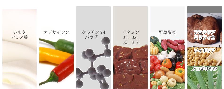 プエラリアミリフィカ末、ノコギリヤシエキス末、シルクパウダー、鮭卵巣膜抽出物(デキストリン、鮭卵巣膜)、ケラチン加水分解物、野草発酵エキス末(デキストリン、野草発酵エキス)、大豆抽出物、結晶セルロース、ステアリン酸カルシウム、ナイアシン、クエン酸、香辛料抽出物(カプサイシン)、パントテン酸カルシウム、ビタミンB6、ビタミンB2、ビタミンB1、加工デンプン、リン酸カルシウム、葉酸、ビタミンB12、(原材料の一部に鶏肉(羽毛)、サケ、大豆、やまいも、リンゴを含む)被包剤:(豚ゼラチン、カラメル色素)